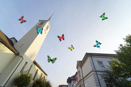 Bild für Schmetterlinge